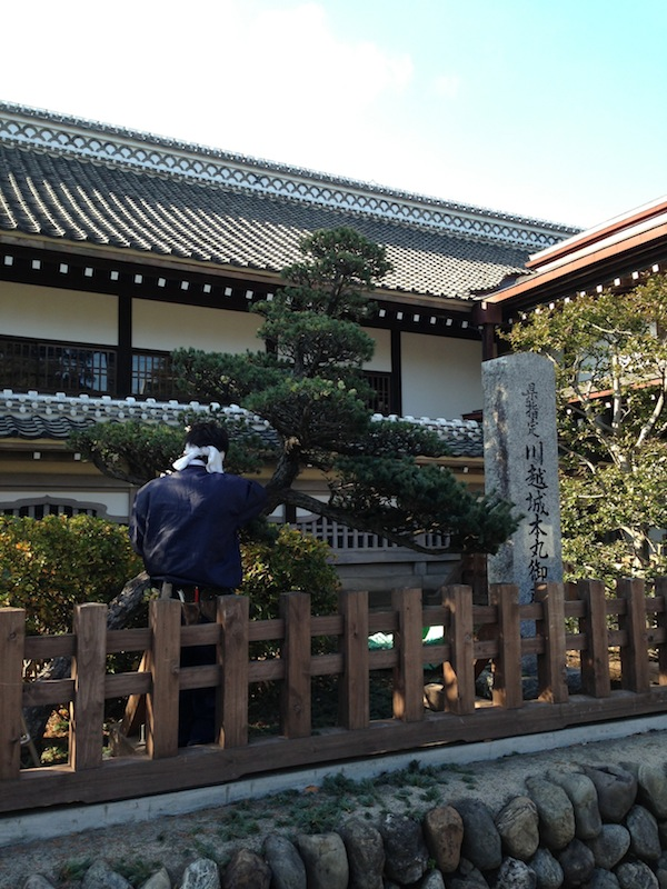 Jardinero en el Castillo de Kawagoe
