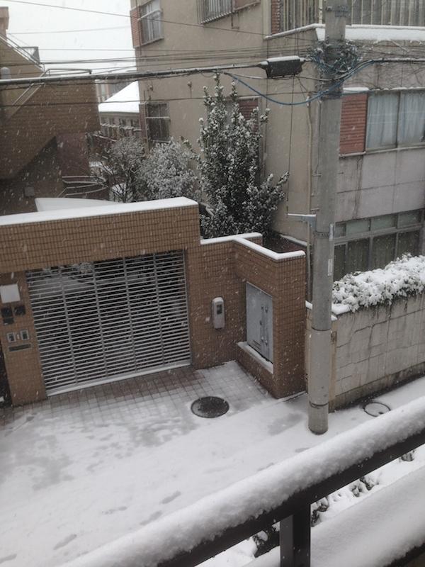 Nieve desde la terraza