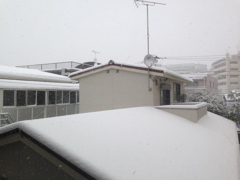 Casas cubiertas de nieve