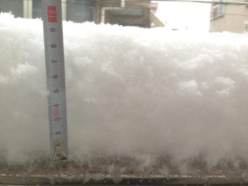 Nivel de la nieve